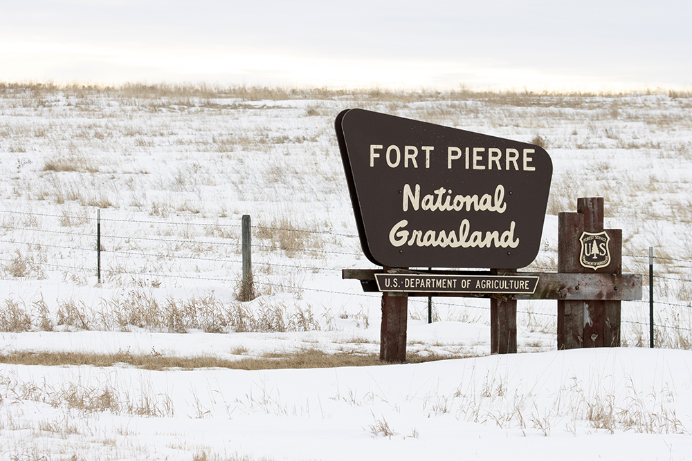 Fort Pierre National Grasslands - South Dakota