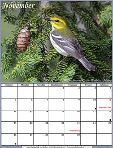 November 2017 Calendar - Black-throated Green Warbler