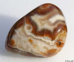 Bubblegum Agate 5 - South Dakota Rockhound