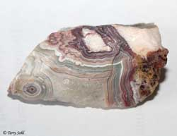 Mexican Crazy Lace agate 1 - South Dakota Rockhound