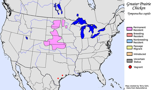 Greater Prairie Chicken - Range map
