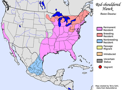 Red-shouldered Hawk - Range Map